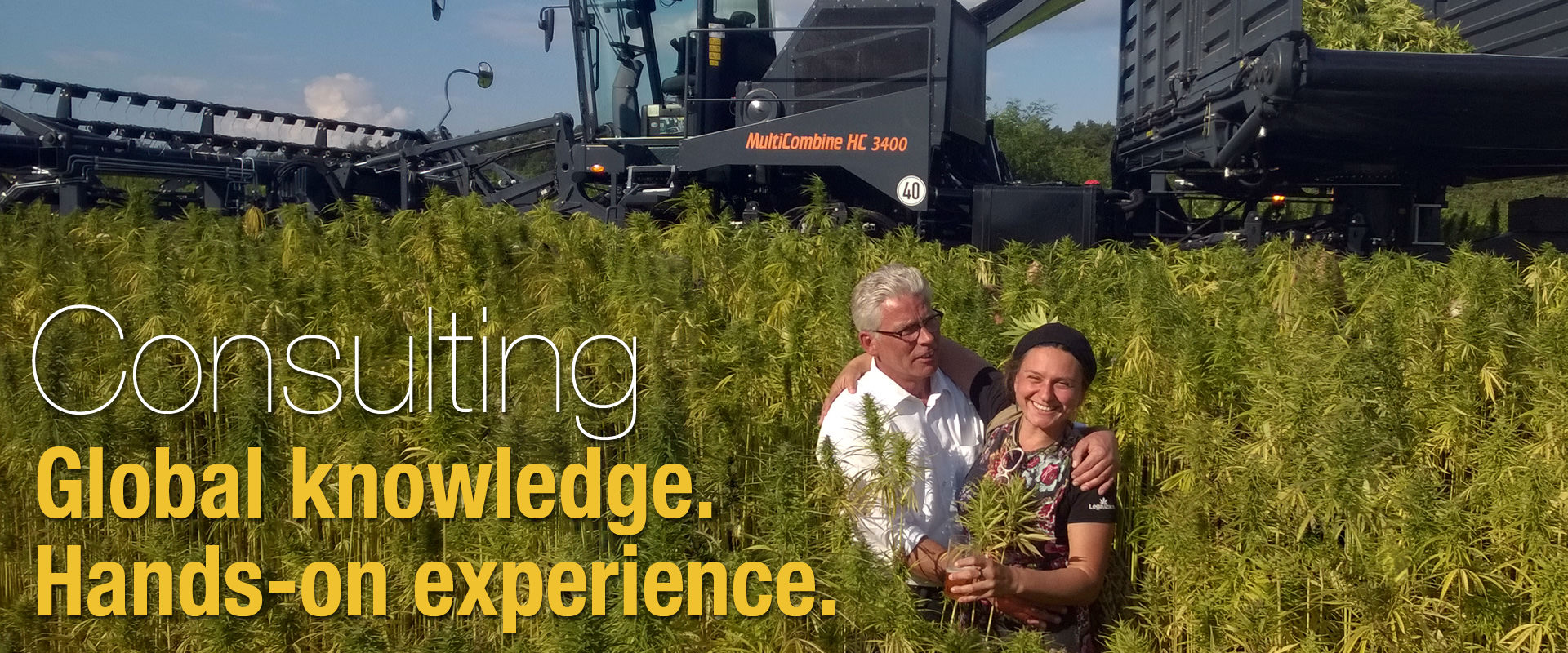 Hemp industry consulting
