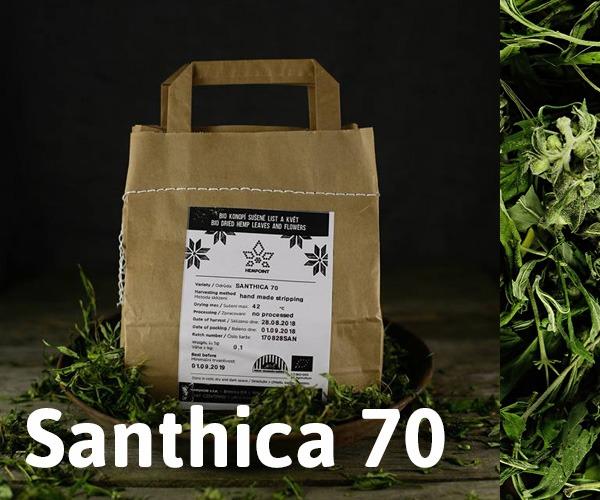 Hemp Flowers: Santhica 70