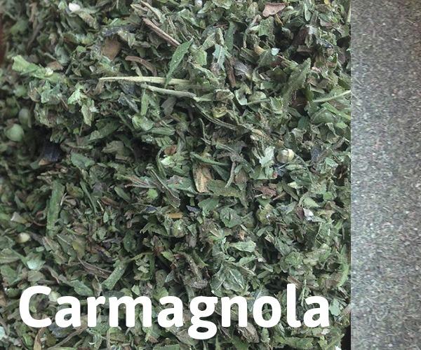 Hemp Flowers: Carmagnola